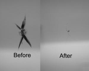 Rock Chip Repair >> Auto Glass Repair - Windshield Repair - The Glassman ...